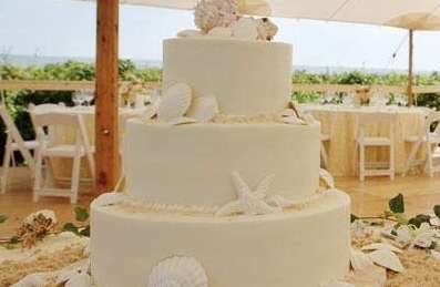 Beach Wedding Extravaganza